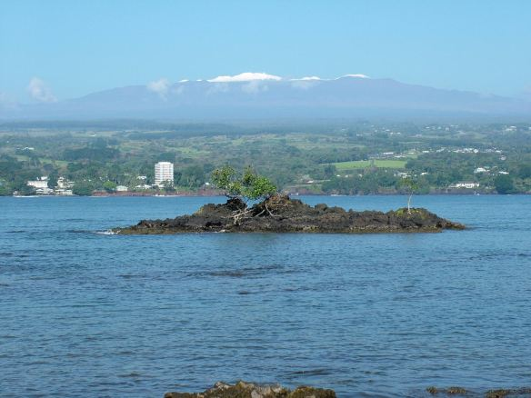 mauna kea viewed from hilo